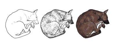 sova för hund vektor illustrationer