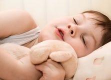 sova för unge fotografering för bildbyråer