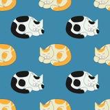 Sova katter Stock Illustrationer