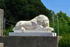 Sova lejonet av vit marmor Arkivfoton