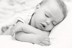 Sova lilla barnet behandla som ett barn pojken Arkivbilder