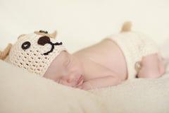 Nyfött ha på sig förföljer dräkten arkivbilder