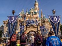 Sova skönhetslotten på Disneyland parkera fotografering för bildbyråer