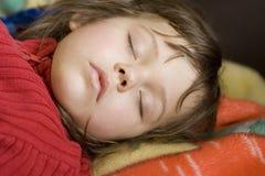 Sova skönhet Arkivbilder