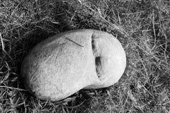 Sovande sten Fotografering för Bildbyråer