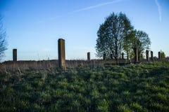 Soviet farm ruins Royalty Free Stock Photo