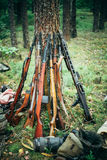 Soviet and German rifles of World War II - SVT 40 Royalty Free Stock Photography