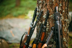 Soviet and German rifles of World War II - SVT 40 Stock Photo