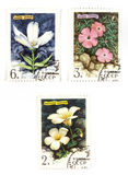 Soviet stamps with flowers. Collectible stamps from Soviet Union. Set with beautiful flowers Royalty Free Stock Images