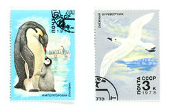 Soviet Union postage stamps Stock Images