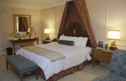 Sovrum med det king-size underlaget för canopy fotografering för bildbyråer