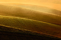 Sow field, wavy brown hillocks, agriculture landscape, nature carpet, Tuscany, Italy Stock Photo