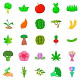 Sow icons set, cartoon style. Sow icons set. Cartoon set of 25 sow vector icons for web isolated on white background Royalty Free Stock Image