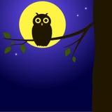 sowa gałęziasty ilustracyjny wektor Zdjęcia Royalty Free