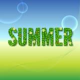 Słowa lato z zielonymi liśćmi Zdjęcie Stock