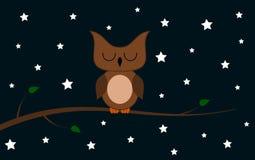 Sowa na gałąź przy nocą Obrazy Royalty Free