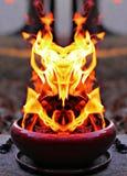 Sowa ogień Obraz Royalty Free