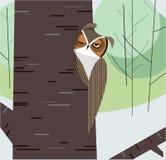 Sowa przysypia w wydrążeniu drzewny bagażnik ilustracja wektor