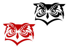 sowa tatuaż Zdjęcia Royalty Free