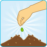 Sowing. The palm throwing in seeds to the ground Royalty Free Stock Images