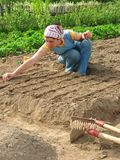 Sowing Stock Photo