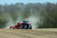 Sowing the corn Stock Images