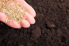 Sowing hand Royalty Free Stock Photos