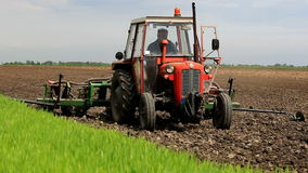 Sowing maize in full swing stock video