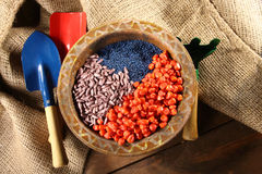 Sowing seed. Colored sowing seed close up Stock Images
