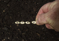 Sowing The Seed Of Life Royalty Free Stock Image