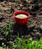 Sowing seed Stock Image