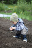 Sowing seeds. A young boy sowing seeds in spring Stock Image