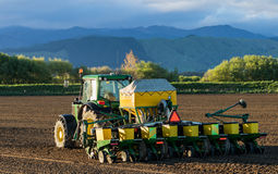 Sowing Seeds Stock Images