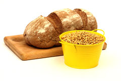 Sowing wheat seed stock photography