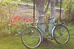 Sowjetisches Weinlesefahrrad im Garten Stockfotografie