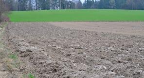 Sown fields , Austria. View of spring sown fields , NiederOstereich, Austria Stock Photography