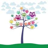 Sowy drzewo kolorowy ilustracja wektor
