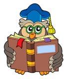 sowy książki odczyt nauczyciel Zdjęcie Stock