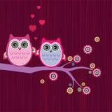 Sowy miłość Fotografia Stock