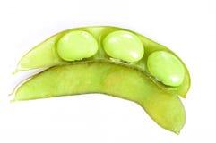Soy bean. Boiled green soy beans, vietnamese beans on white background Stock Image
