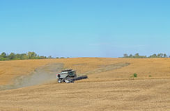 Soy Bean Harvest. Combining beans at harvest time stock image