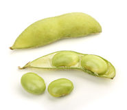 Soy Bean. Isolated on white background Stock Images