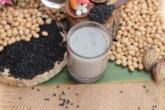 Soy bean milk mix black sesame delicious. Royalty Free Stock Image