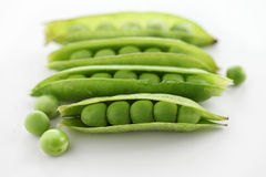 Soy bean pods Royalty Free Stock Photography