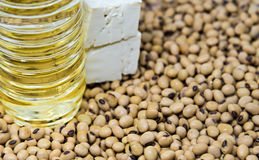 Soy bean product Royalty Free Stock Photo