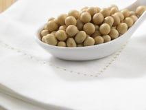 Soy bean Stock Photos