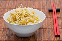 Soy bean sprouts Royalty Free Stock Images