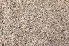 Soy Bean Texture. Soybeans  before using them in your recipe Royalty Free Stock Image