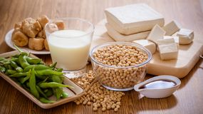 Soy products healthy food. Soy bean, tofu and other soy products royalty free stock photos