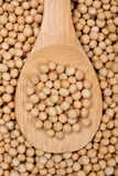 Soy bean on wooden spoon Stock Photos